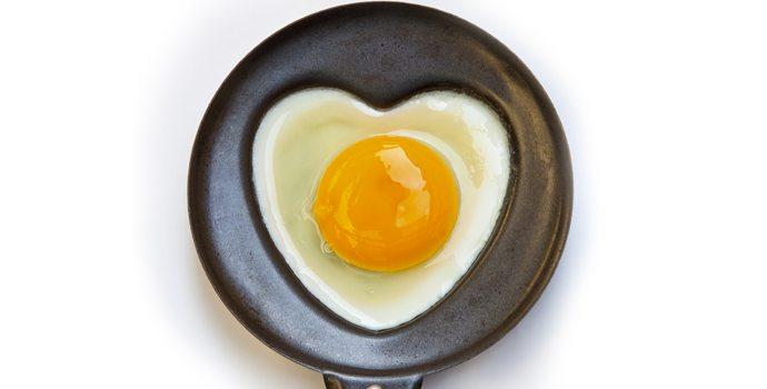 Cholestérol : important à lire