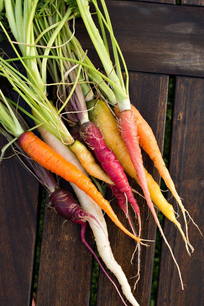 La carotte, une invention moderne