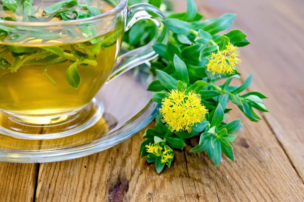 Mettez une plante adaptogène dans votre vie
