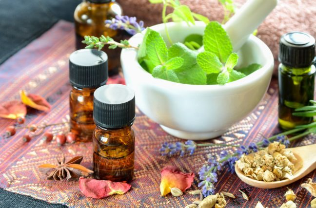 Découvrez l'arsenal des plantes qui soignent