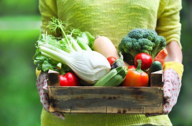 Mangez plus de prébiotiques