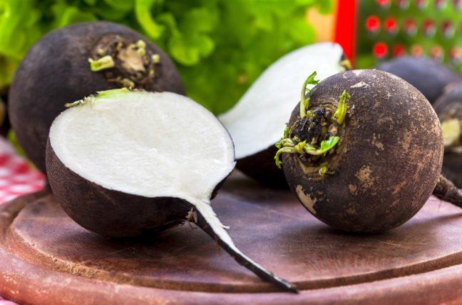 Le légume le plus populaire du japon est le cousin du radis noir
