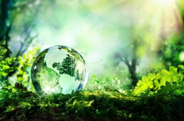 La Terre de plus en plus verte : la bonne nouvelle du dimanche matin