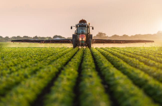 Manger des légumes devient-il dangereux ??