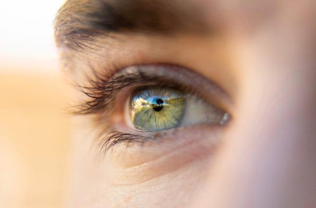 Le blanc des yeux
