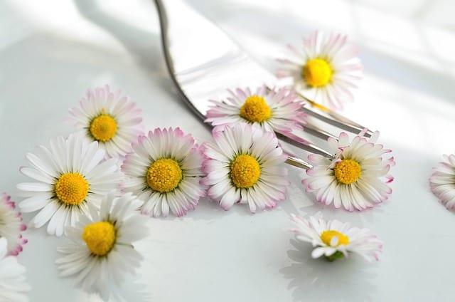 Mangez des fleurs